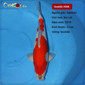 Koi Goshiki 50 cm 1 năm tuổi #008