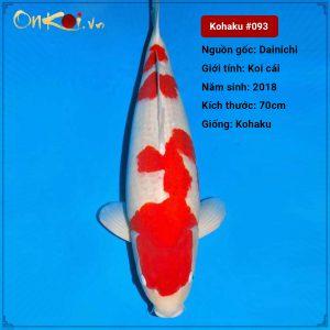 Onkoi Kohaku set 5 con 70 cm 2.5 tuổi cái #093