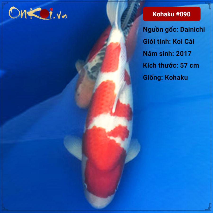 Koi Kohaku 57 cm 3 năm tuổi #90