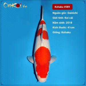 Koi Kohaku 41 cm 2 năm tuổi #089