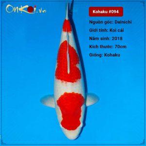 Onkoi Kohaku set 2 con 70 cm 2.5 tuổi #094