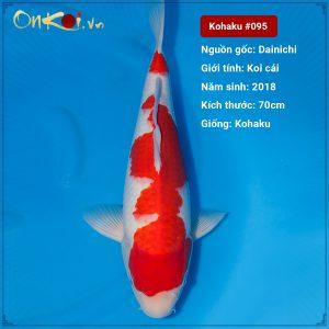 Onkoi Kohaku set 4 con 70 cm 2 tuổi nữ #095