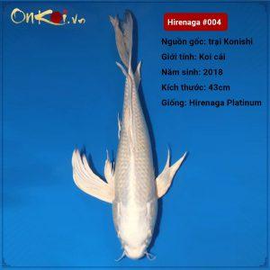 Hirenaga Platinum 55 cm 2018 #004