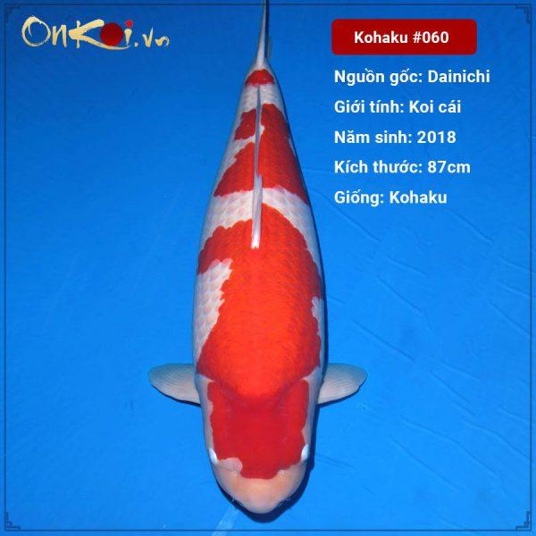 Onkoi Kohaku hơn 3 năm tuổi 87cm #060