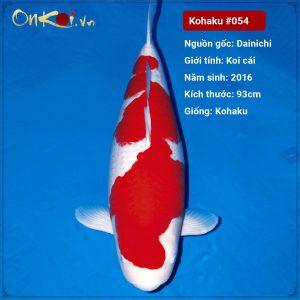 Onkoi Kohaku 93 cm 5 tuổi #054
