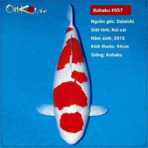 Onkoi Kohaku 94 cm 6 tuổi #057